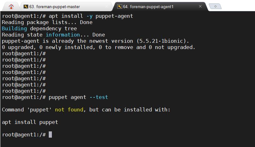 client_puppet2